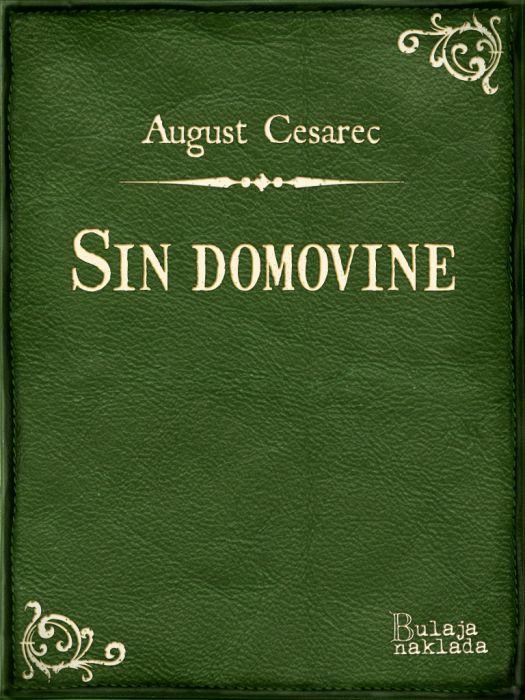 August Cesarec: Sin domovine