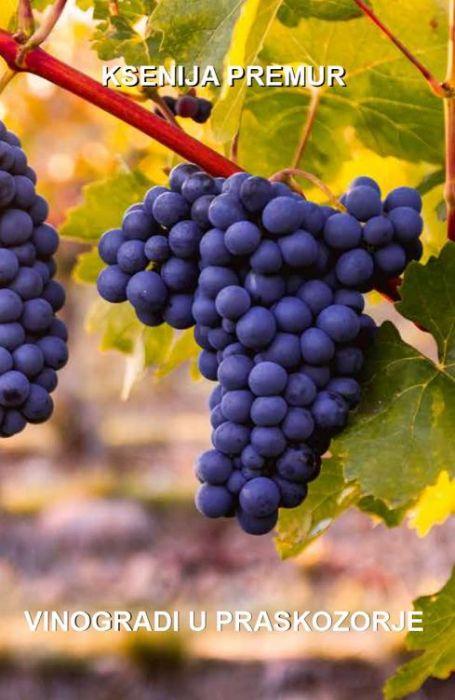 Ksenija Premur: Vinogradi u praskozorje