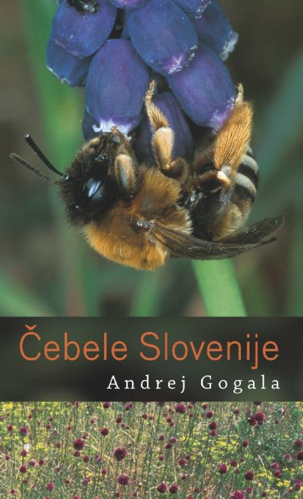 Andrej Gogala: Čebele Slovenije