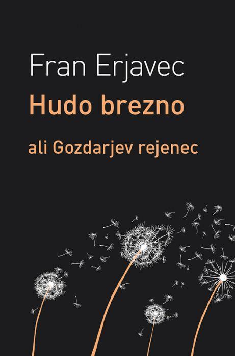 Fran Erjavec: Hudo brezno