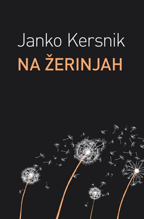 Janko Kersnik: Na Zerinjah
