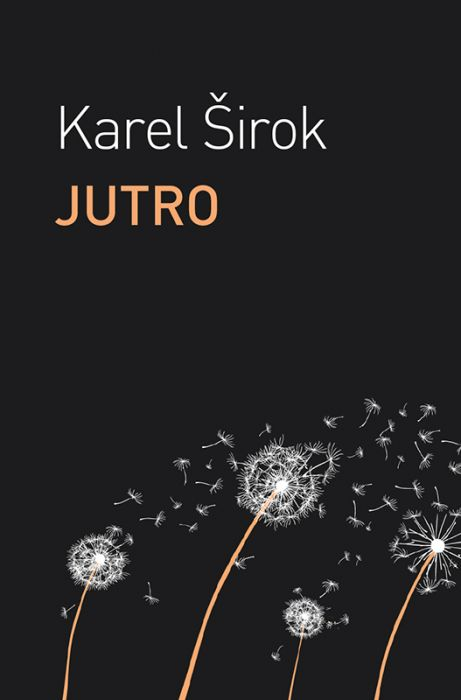 Karel Širok: Jutro