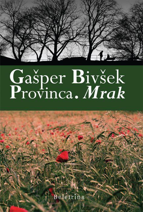 Gašper Bivšek: Provinca. Mrak