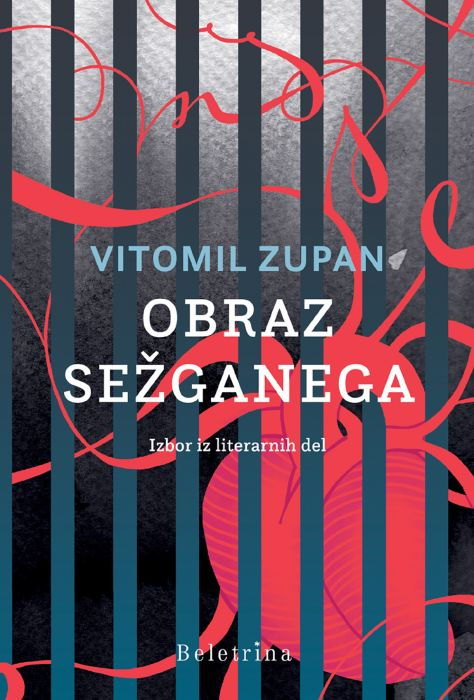 Vitomil Zupan: Obraz sežganega