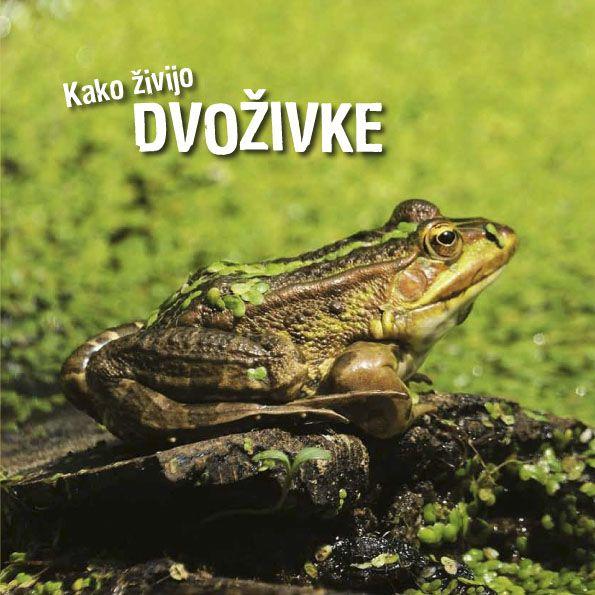 Ivan Esenko: Kako živijo dvoživke
