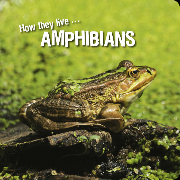 Ivan Esenko: Amphibians
