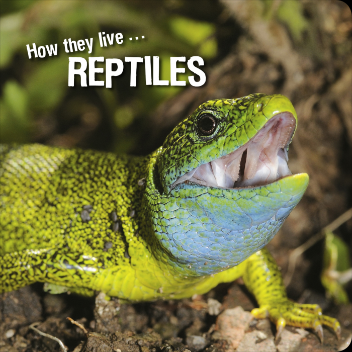 Ivan Esenko: Reptiles
