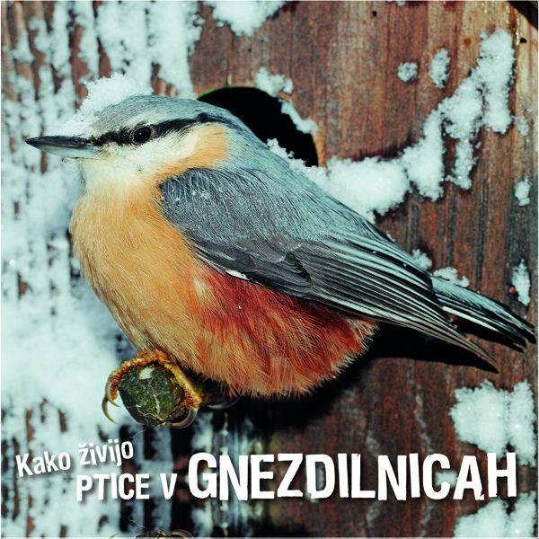 Ivan Esenko: Kako živijo ptice v gnezdilnicah