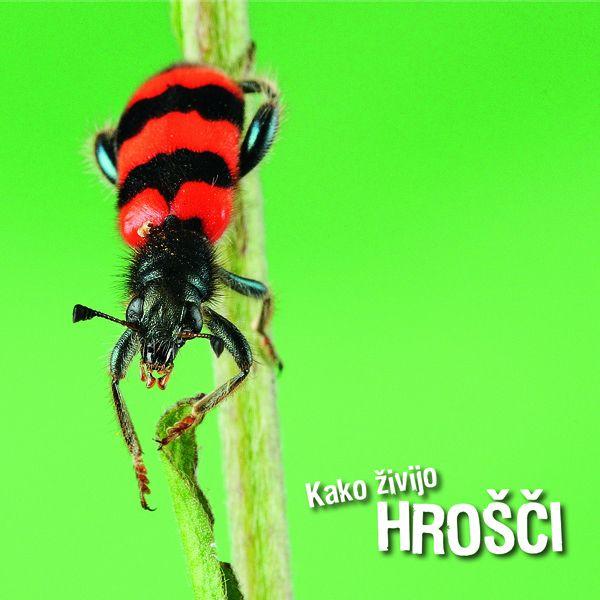 Ivan Esenko: Kako živijo hrošči