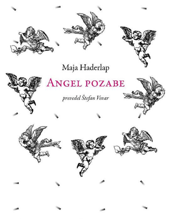 Maja Haderlap: Angel pozabe