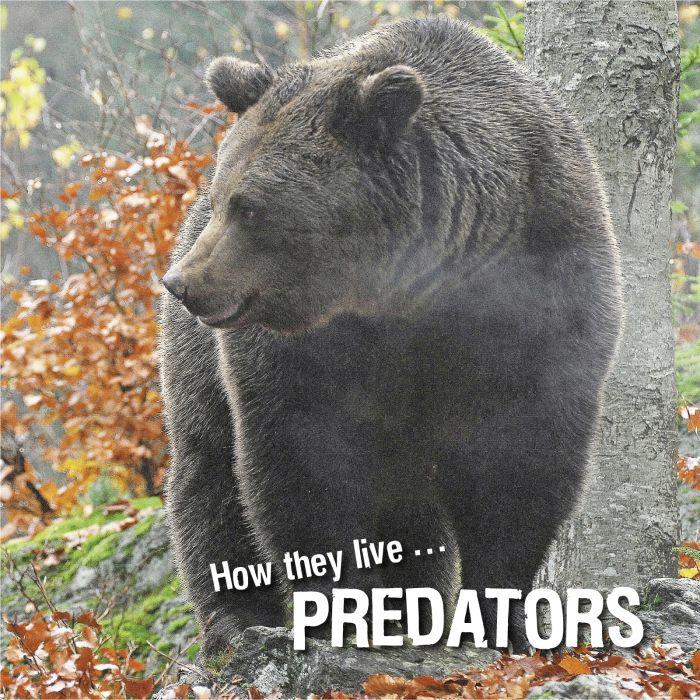 Ivan Esenko: Predators