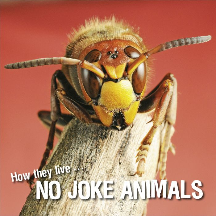 Ivan Esenko: No joke animals