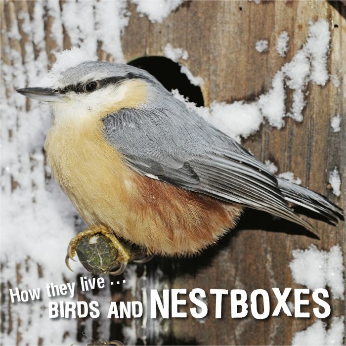 Ivan Esenko: Birds and nest boxes