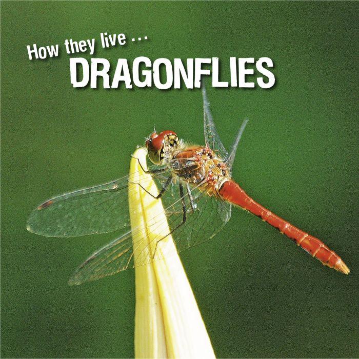 Ivan Esenko: Dragonflies