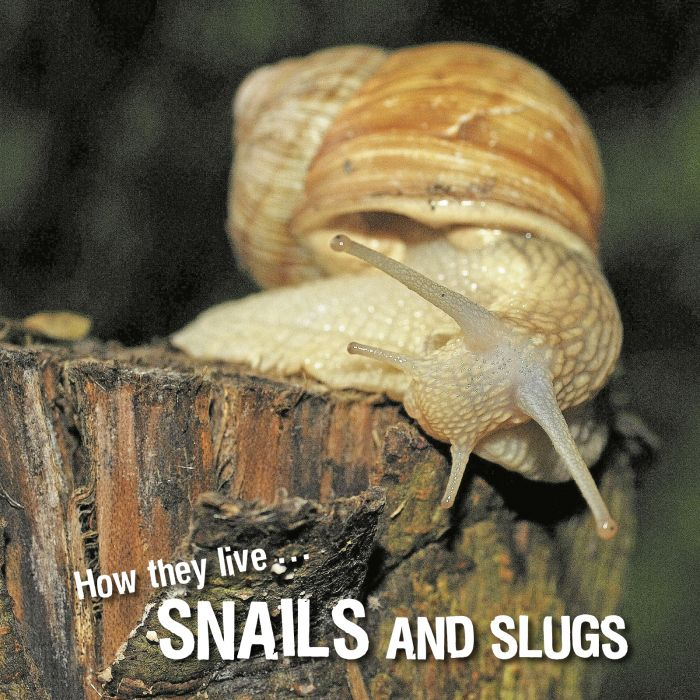 Ivan Esenko: Snails and slugs