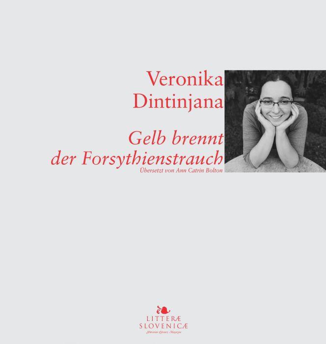 Veronika Dintinjana: Gelb brennt der Forsythienstrauch