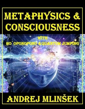 Andrej Mlinšek: Metaphysics and conciousness